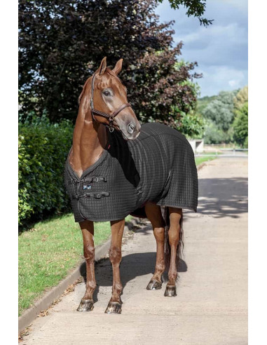 LeMieux Thermo Cool Rug