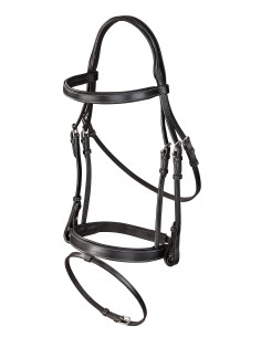 Lunging bridle