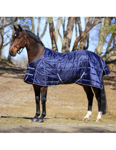 Stable Rug Hansbo Sport Stay 220g