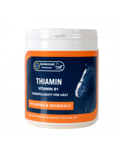 Biofarmab Thiamin B1