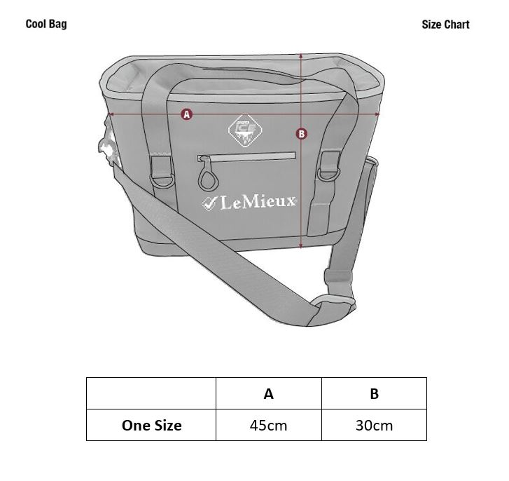 LeMieux cooling bag